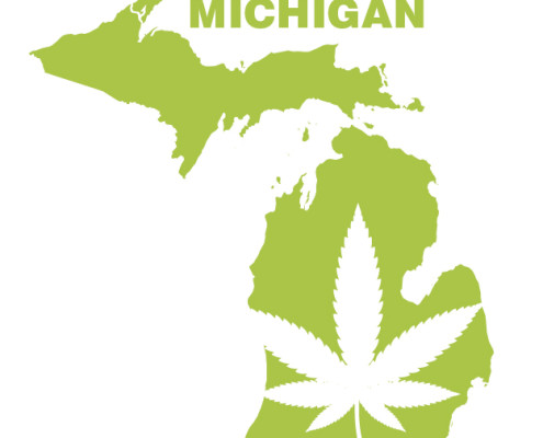 outline of the state of michigan with a cannabis leaf in the center
