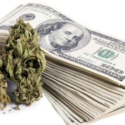 money and cannabis, something a cannabis business attorney can help you with