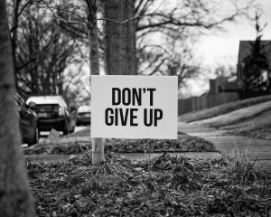 a yard sign that says don't give up which is related to people wanting to be part of the Michigan cannabis industry